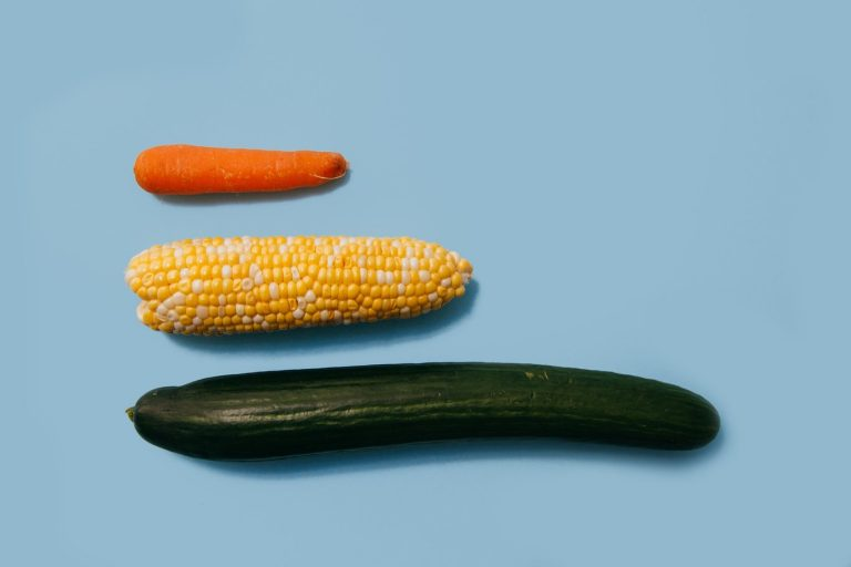 carrot, corn and cucumber on a blue background