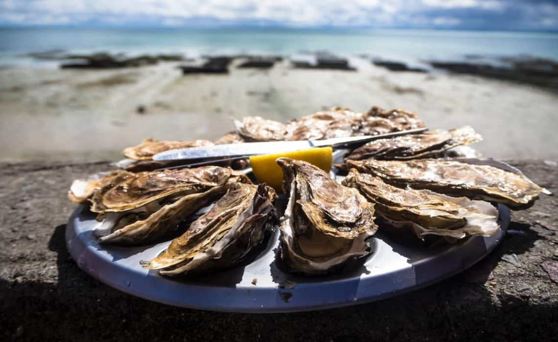 Oysters on a plate in a beach